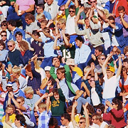 fans crowd header